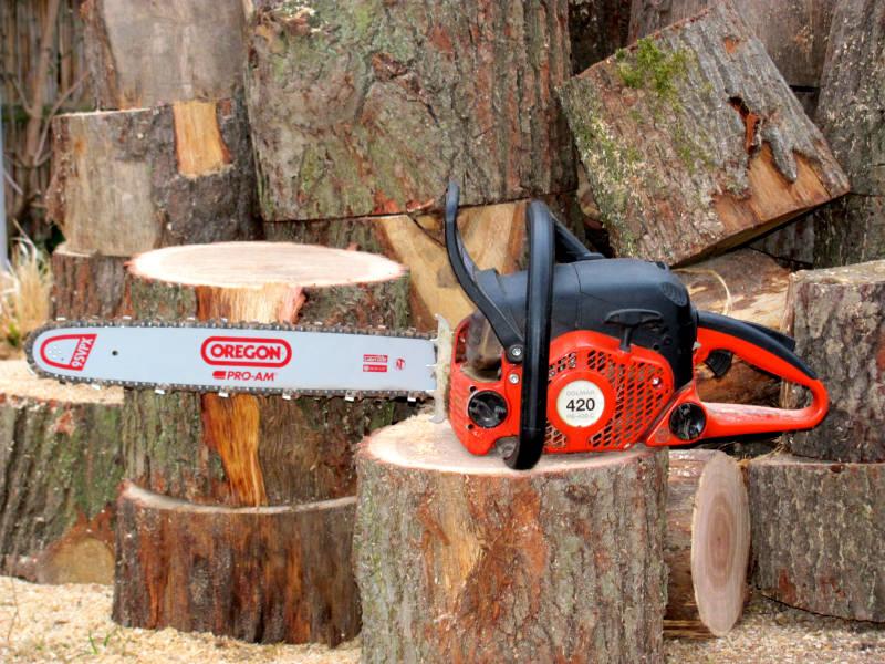 Brennholz sägen mit Kettensäge